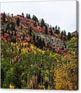 Idaho Colors In Fall Canvas Print