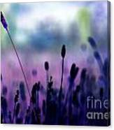 If I Had A Purple Crayon ... Canvas Print