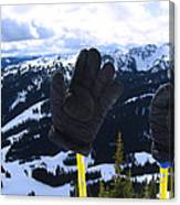 If The Glove Fits Canvas Print