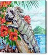 Iguana Hibiscis Canvas Print