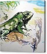 Iguana On Beach Canvas Print