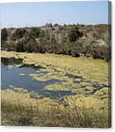 Ile De Re - Marshes Canvas Print