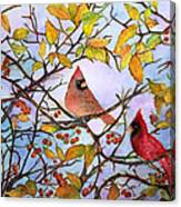 Illinois Cardinals  Canvas Print