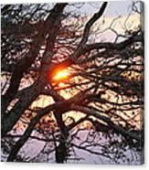 Illuminating Sunset Canvas Print