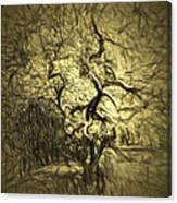 Illusion Tree Canvas Print