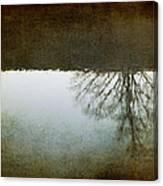 Illusions Of Autumn Canvas Print