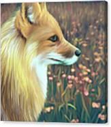 Illustration Of Red Fox Canvas Print