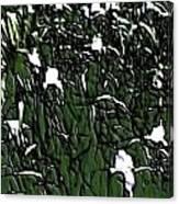 Image 10 Canvas Print