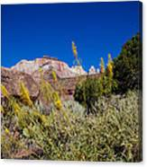 Image Of Zion 01 Canvas Print