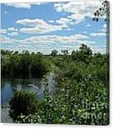 Images Of The Pantanal Canvas Print