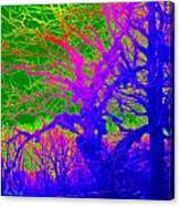 Imaginary Forest Number Two Canvas Print