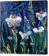 Impasto Daisies Canvas Print