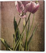 Imperfect Beauty Canvas Print