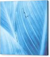Imperfection Blue Version Canvas Print