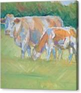 Impressionist Cow Calf Painting Canvas Print