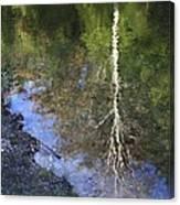 Impressionist Reflections Canvas Print