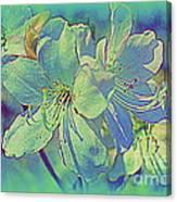 Impressionistic Blue Blossoms Canvas Print