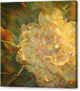 Impressionistic Rose Canvas Print