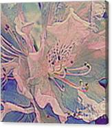 Impressionistic Spring Blossoms Canvas Print