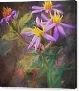 Impressions Of An Aster Canvas Print