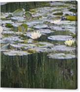 Impressions Of Monet's Water Lilies  Canvas Print