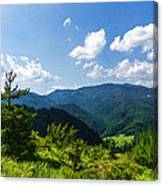 Impressions Of Mountains And Forests And Trees Canvas Print