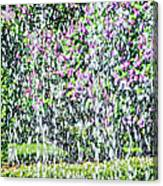 Impressions Of Spring 4 Canvas Print