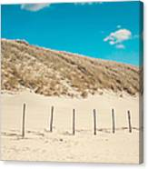 In A Line. Coastal Dunes In Holland Canvas Print