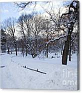 In Central Park Canvas Print