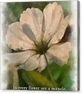 In Every Flower See A Miracle 01 Canvas Print