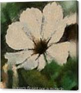 In Every Flower See A Miracle 03 Canvas Print