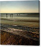 In From The Sea Canvas Print