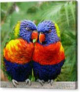 In Love Lorikeets Canvas Print