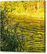 In Praise Of Grass Canvas Print