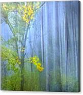 In The Blue Forest Canvas Print