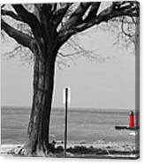 In The Distance South Haven Lighthouse Canvas Print
