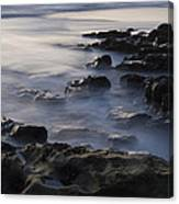 In The Fading Light Canvas Print