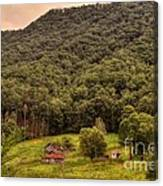 In The Hills Of Virginia Canvas Print