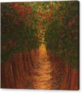 In The Lane Canvas Print