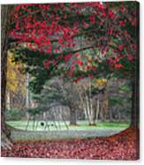 In The Park Square Canvas Print