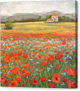 In The Poppy Field Canvas Print