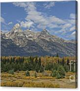 In The Shadow Of The Tetons Canvas Print