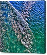 In The Wake Canvas Print