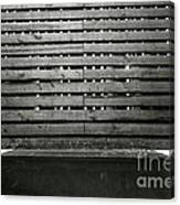 In This Space #2 Canvas Print