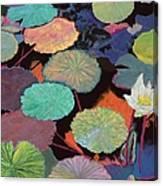 Ina Magic Canvas Print