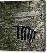 Indecipherable Canvas Print
