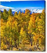 Independence Pass Autumn Colors Canvas Print