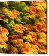 Indian Blanket Psychedelic Canvas Print