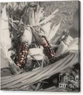 Indian Corn In Basket Partial Color Canvas Print