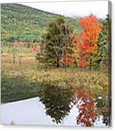 Indian Summer Acadia Park Canvas Print